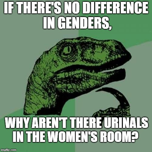 Philosoraptor Meme | IF THERE'S NO DIFFERENCE IN GENDERS, WHY AREN'T THERE URINALS IN THE WOMEN'S ROOM? | image tagged in memes,philosoraptor | made w/ Imgflip meme maker