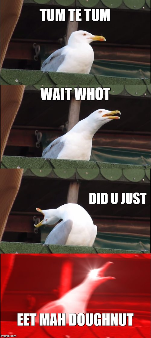 Inhaling Seagull Meme | TUM TE TUM WAIT WHOT DID U JUST EET MAH DOUGHNUT | image tagged in memes,inhaling seagull | made w/ Imgflip meme maker