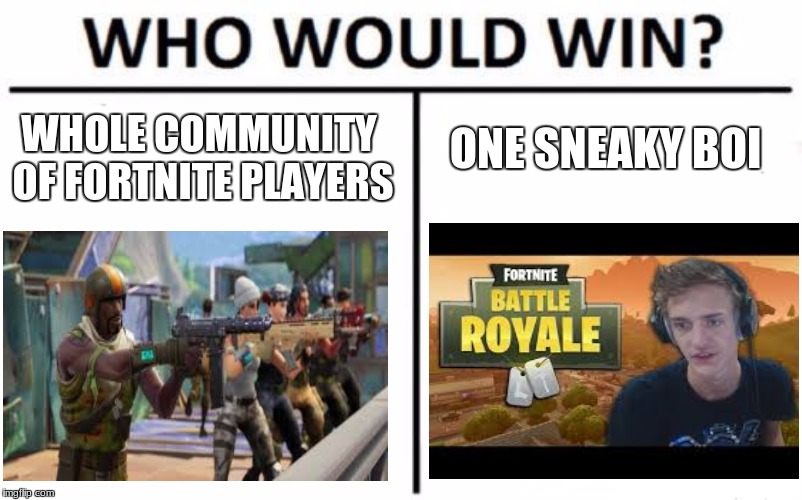 Who Would Win? Meme | WHOLE COMMUNITY OF FORTNITE PLAYERS ONE SNEAKY BOI | image tagged in memes,who would win | made w/ Imgflip meme maker