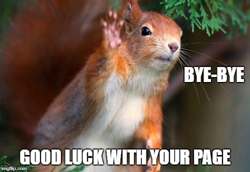 BYE-BYE GOOD LUCK WITH YOUR PAGE | image tagged in squirrel,bye-bye | made w/ Imgflip meme maker
