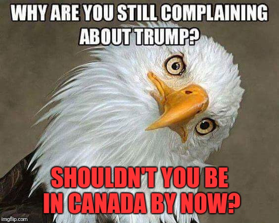 Really Doe. | WHY ARE YOU STILL COMPLAINING ABOUT PRESIDENT TRUMP? SHOULDN'T YOU BE IN CANADA BY NOW? | image tagged in president trump,donald trump,maga,dank memes,memes,oc | made w/ Imgflip meme maker
