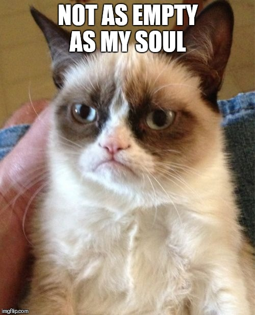 Grumpy Cat Meme | NOT AS EMPTY AS MY SOUL | image tagged in memes,grumpy cat | made w/ Imgflip meme maker