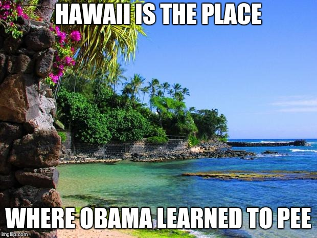 Working on my roasts | HAWAII IS THE PLACE WHERE OBAMA LEARNED TO PEE | image tagged in hawaii,obama | made w/ Imgflip meme maker