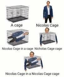 To much Cage! | image tagged in nicolas cage,to much cage | made w/ Imgflip meme maker