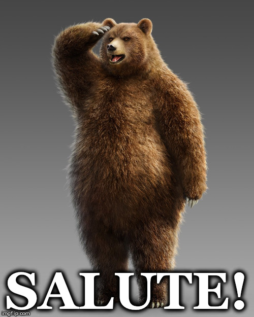 SALUTE! | image tagged in bearsalute1 | made w/ Imgflip meme maker