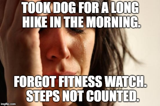 First World Problems Meme | TOOK DOG FOR A LONG HIKE IN THE MORNING. FORGOT FITNESS WATCH.  STEPS NOT COUNTED. | image tagged in memes,first world problems,AdviceAnimals | made w/ Imgflip meme maker