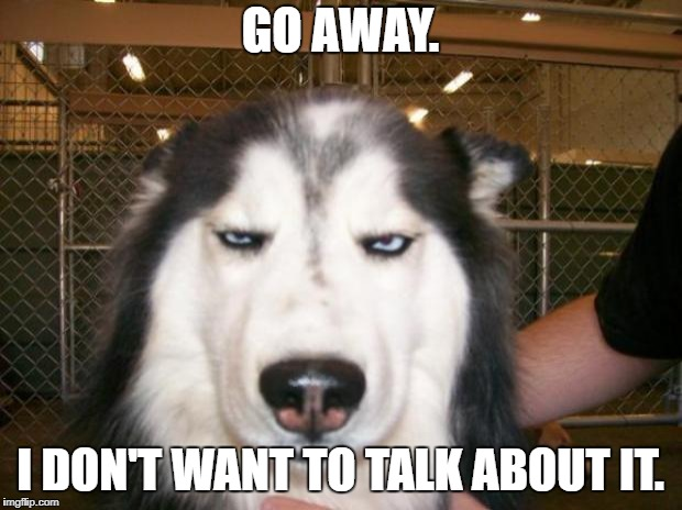 Annoyed Dog | GO AWAY. I DON'T WANT TO TALK ABOUT IT. | image tagged in annoyed dog | made w/ Imgflip meme maker
