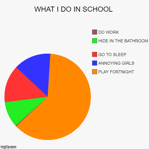 WHAT I DO IN SCHOOL | PLAY FORTNIGHT , ANNOYING GIRLS , GO TO SLEEP , HIDE IN THE BATHROOM , DO WORK | image tagged in funny,pie charts | made w/ Imgflip pie chart maker