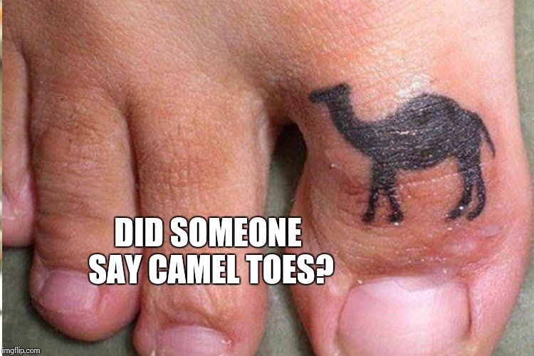 DID SOMEONE SAY CAMEL TOES? | made w/ Imgflip meme maker