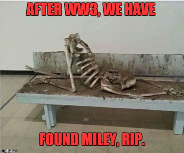 AFTER WW3, WE HAVE FOUND MILEY, RIP. | image tagged in die a hoe | made w/ Imgflip meme maker