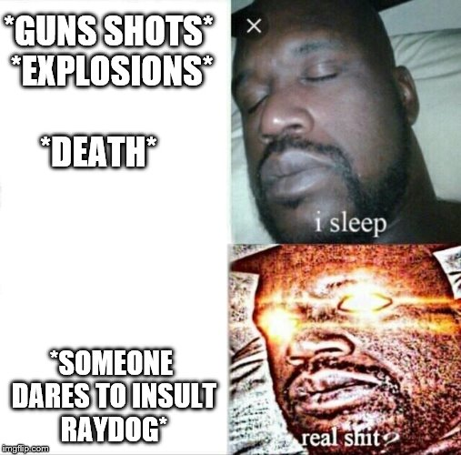 Sleeping shack | *GUNS SHOTS* *EXPLOSIONS* *DEATH* *SOMEONE DARES TO INSULT RAYDOG* | image tagged in memes,sleeping shaq,raydog,raydog for president | made w/ Imgflip meme maker