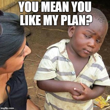 Third World Skeptical Kid Meme | YOU MEAN YOU LIKE MY PLAN? | image tagged in memes,third world skeptical kid | made w/ Imgflip meme maker