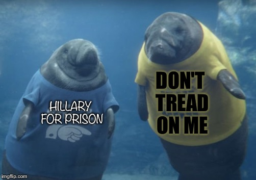 HILLARY FOR PRISON DON'T TREAD ON ME | image tagged in memes | made w/ Imgflip meme maker