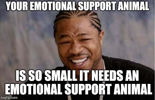 Yo Dawg Heard You Meme | YOUR EMOTIONAL SUPPORT ANIMAL IS SO SMALL IT NEEDS AN EMOTIONAL SUPPORT ANIMAL | image tagged in memes,yo dawg heard you | made w/ Imgflip meme maker