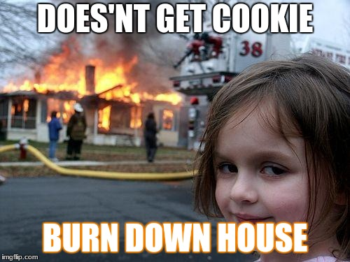 worth it  | DOES'NT GET COOKIE BURN DOWN HOUSE | image tagged in memes,disaster girl | made w/ Imgflip meme maker