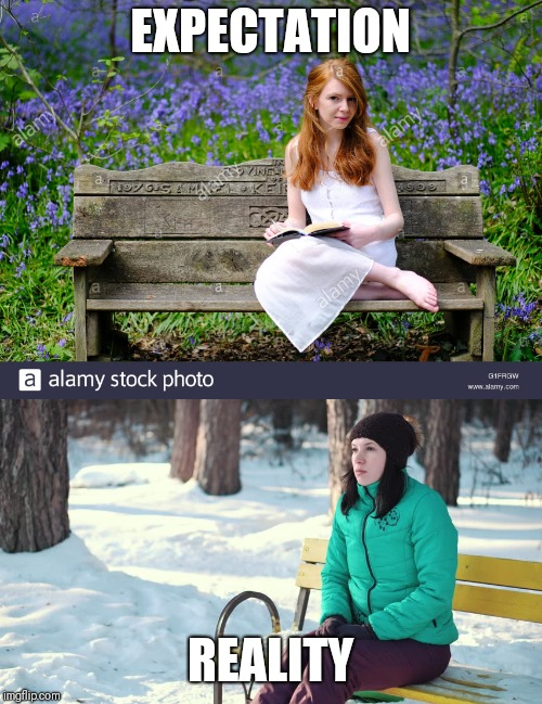 happy spring! | EXPECTATION REALITY | image tagged in spring,memes | made w/ Imgflip meme maker