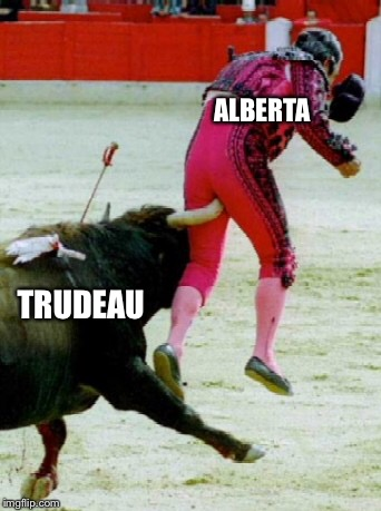 Typical Alberta Meme | TRUDEAU ALBERTA | image tagged in political meme | made w/ Imgflip meme maker