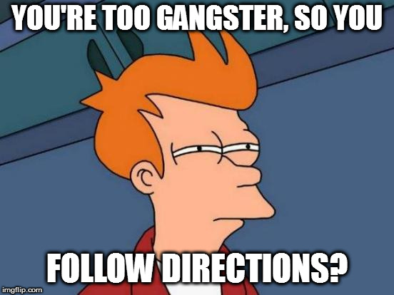 Futurama Fry Meme | YOU'RE TOO GANGSTER, SO YOU FOLLOW DIRECTIONS? | image tagged in memes,futurama fry | made w/ Imgflip meme maker