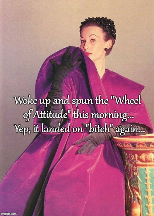 "Wheel of Attitude... | Woke up and spun the ""Wheel of Attitude"" this morning...  Yep, it landed on ""b**ch"" again... 