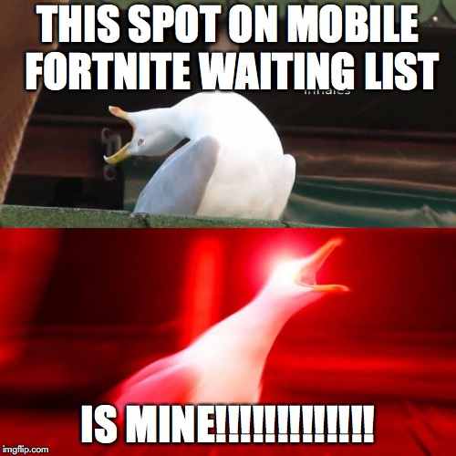 THIS SPOT ON MOBILE FORTNITE WAITING LIST IS MINE!!!!!!!!!!!!! | image tagged in inhaling bird meme | made w/ Imgflip meme maker