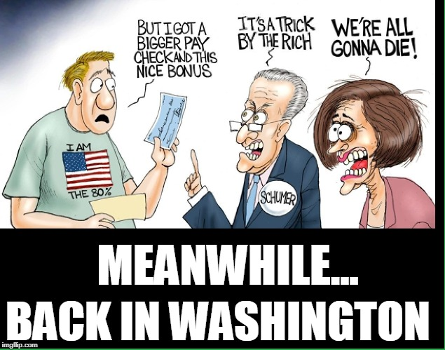 I'll Take a Few of those Crumbs, you idiots | MEANWHILE... BACK IN WASHINGTON | image tagged in vince vance,nancy pelosi,chuck schumer,democrats are against tax cuts | made w/ Imgflip meme maker