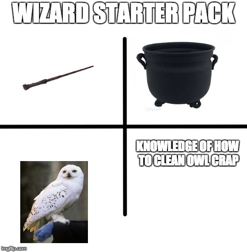 Blank Starter Pack Meme | WIZARD STARTER PACK KNOWLEDGE OF HOW TO CLEAN OWL CRAP | image tagged in memes,blank starter pack | made w/ Imgflip meme maker
