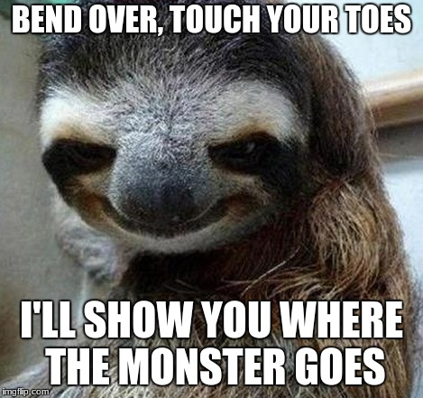 I'll show you where the monster goes | BEND OVER, TOUCH YOUR TOES I'LL SHOW YOU WHERE THE MONSTER GOES | image tagged in monster,sloth,funny,front page | made w/ Imgflip meme maker