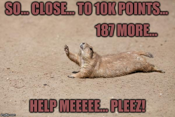 SO... CLOSE... TO 10K POINTS... HELP MEEEEE... PLEEZ! 187 MORE... | image tagged in desperately seeking help | made w/ Imgflip meme maker
