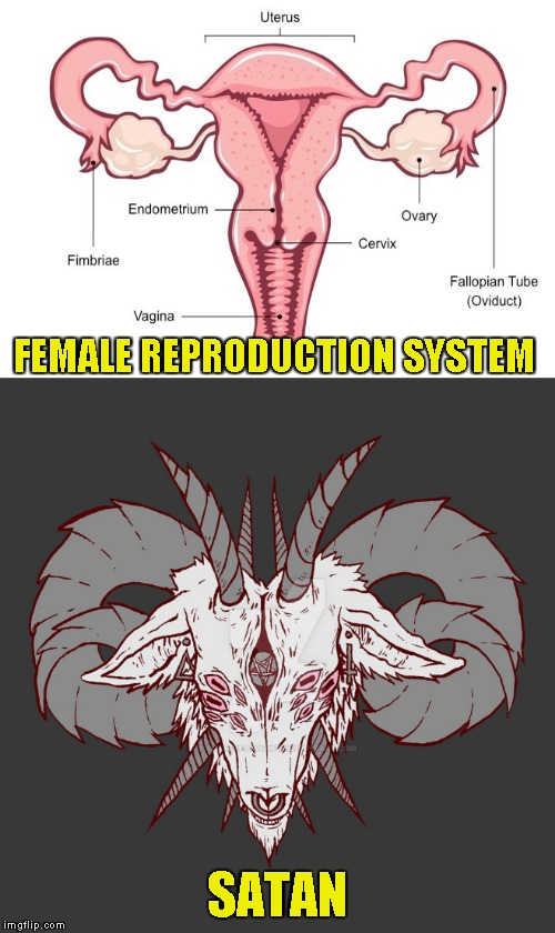 I can't be the only one who sees it | FEMALE REPRODUCTION SYSTEM SATAN | image tagged in memes,satanism,powermetalhead,similarity,female,funny | made w/ Imgflip meme maker