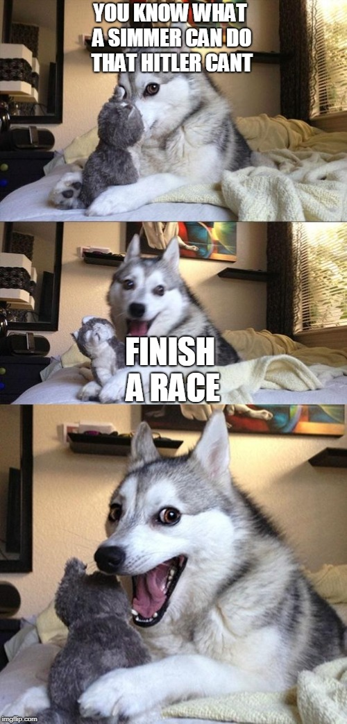 Bad Joke Dog | YOU KNOW WHAT A SIMMER CAN DO THAT HITLER CANT FINISH A RACE | image tagged in bad joke dog | made w/ Imgflip meme maker