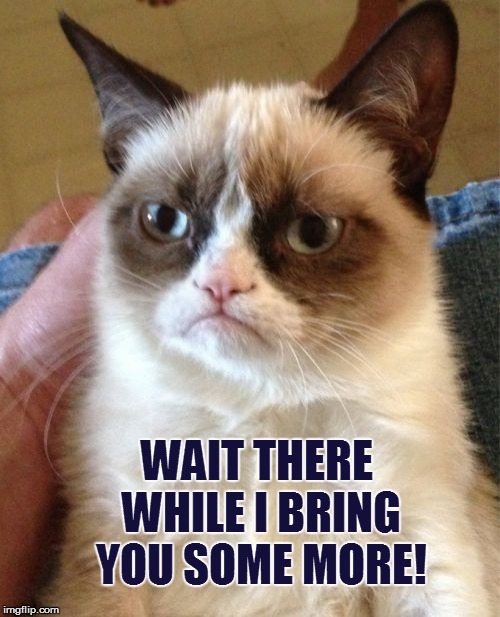 Grumpy Cat Meme | WAIT THERE WHILE I BRING YOU SOME MORE! | image tagged in memes,grumpy cat | made w/ Imgflip meme maker