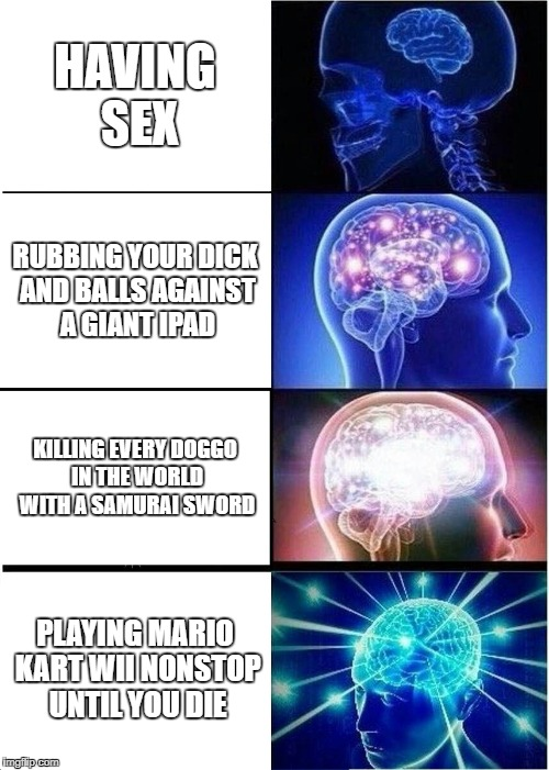 Expanding Brain Meme | HAVING SEX RUBBING YOUR DICK AND BALLS AGAINST A GIANT IPAD KILLING EVERY DOGGO IN THE WORLD WITH A SAMURAI SWORD PLAYING MARIO KART WII NON | image tagged in memes,expanding brain | made w/ Imgflip meme maker