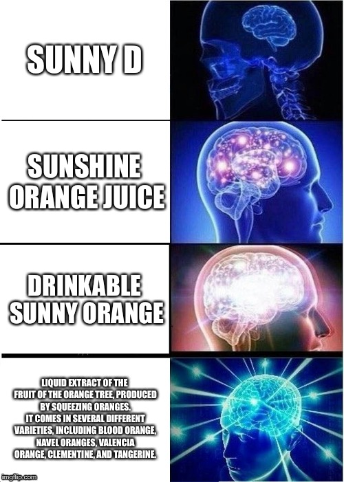 Expanding Brain Meme | SUNNY D SUNSHINE ORANGE JUICE DRINKABLE SUNNY ORANGE LIQUID EXTRACT OF THE FRUIT OF THE ORANGE TREE, PRODUCED BY SQUEEZING ORANGES. IT COMES | image tagged in memes,expanding brain | made w/ Imgflip meme maker