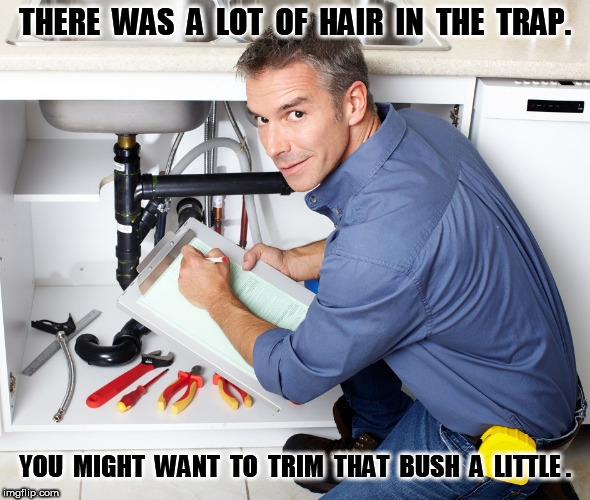 Trim that bush |  THERE  WAS  A  LOT  OF  HAIR  IN  THE  TRAP. YOU  MIGHT  WANT  TO  TRIM  THAT  BUSH  A  LITTLE . | image tagged in trim,bush,plumber,funny,meme | made w/ Imgflip meme maker
