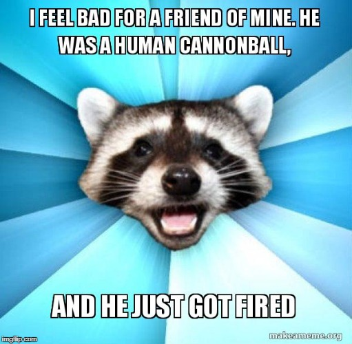 image tagged in bad pun coon,memes | made w/ Imgflip meme maker