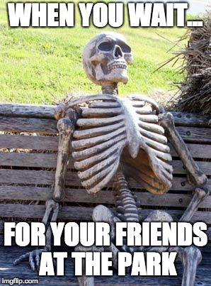 Waiting Skeleton Meme | WHEN YOU WAIT... FOR YOUR FRIENDS AT THE PARK | image tagged in memes,waiting skeleton | made w/ Imgflip meme maker