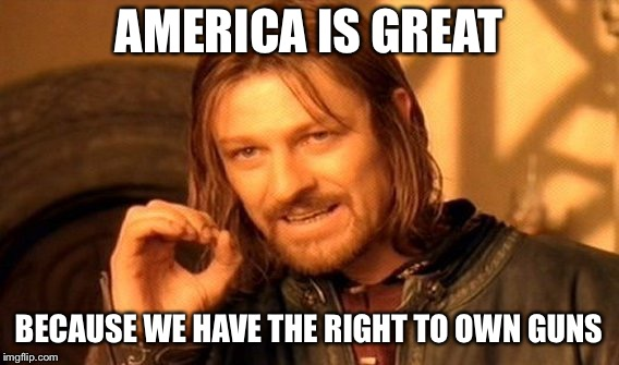 One Does Not Simply Meme | AMERICA IS GREAT BECAUSE WE HAVE THE RIGHT TO OWN GUNS | image tagged in memes,one does not simply | made w/ Imgflip meme maker