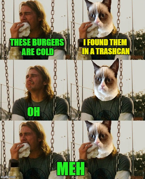UnHappy Meal | THESE BURGERS ARE COLD I FOUND THEM IN A TRASHCAN OH MEH | image tagged in funny memes,first world stoner problems,first world problems cat | made w/ Imgflip meme maker