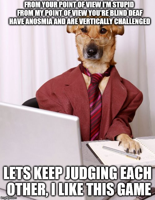 Raydog would've submitted this, if only he were still alive | FROM YOUR POINT OF VIEW I'M STUPID FROM MY POINT OF VIEW YOU'RE BLIND DEAF HAVE ANOSMIA AND ARE VERTICALLY CHALLENGED LETS KEEP JUDGING EACH | image tagged in business dog,raydog,blind,deaf,memes,dog | made w/ Imgflip meme maker
