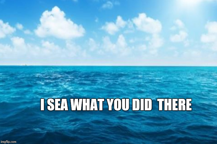 I SEA WHAT YOU DID  THERE | made w/ Imgflip meme maker