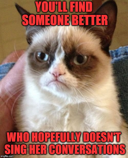 Grumpy Cat Meme | YOU'LL FIND SOMEONE BETTER WHO HOPEFULLY DOESN'T SING HER CONVERSATIONS | image tagged in memes,grumpy cat | made w/ Imgflip meme maker