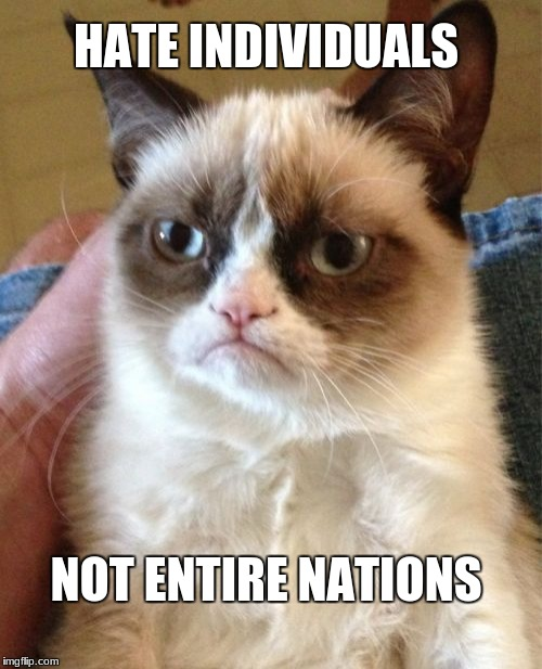 Imgflip's favorite cat offers some valuable insight | HATE INDIVIDUALS NOT ENTIRE NATIONS | image tagged in grumpy cat,memes,politics,war,hate,grumpy cat weekend | made w/ Imgflip meme maker