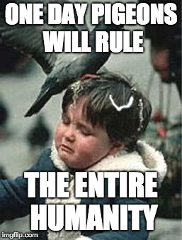 Bird Poop Blues | ONE DAY PIGEONS WILL RULE THE ENTIRE HUMANITY | image tagged in bird poop blues | made w/ Imgflip meme maker