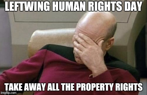 Captain Picard Facepalm Meme | LEFTWING HUMAN RIGHTS DAY TAKE AWAY ALL THE PROPERTY RIGHTS | image tagged in memes,captain picard facepalm | made w/ Imgflip meme maker