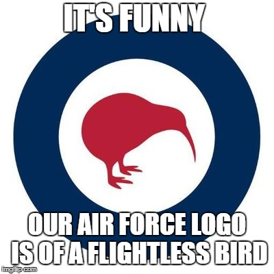 air force | IT'S FUNNY OUR AIR FORCE LOGO IS OF A FLIGHTLESS BIRD | image tagged in kiwi,meme | made w/ Imgflip meme maker
