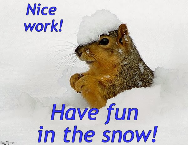 Nice work! Have fun in the snow! | image tagged in snow squirrel | made w/ Imgflip meme maker
