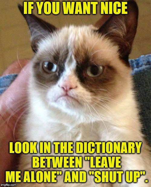 "Not so nice. | IF YOU WANT NICE LOOK IN THE DICTIONARY BETWEEN ""LEAVE ME ALONE"" AND ""SHUT UP"". 