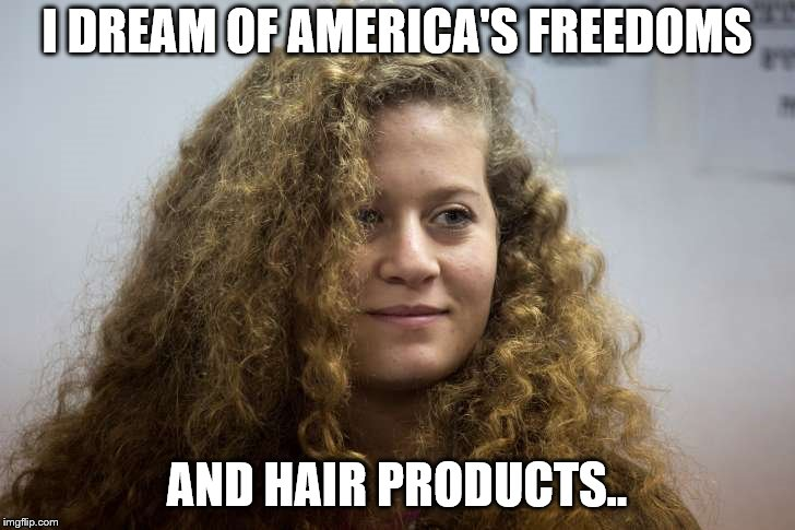 I DREAM OF AMERICA'S FREEDOMS AND HAIR PRODUCTS.. | image tagged in poof | made w/ Imgflip meme maker