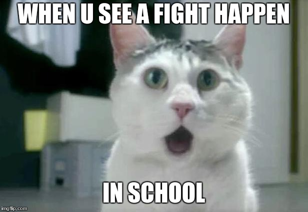 OMG Cat | WHEN U SEE A FIGHT HAPPEN IN SCHOOL | image tagged in memes,omg cat | made w/ Imgflip meme maker