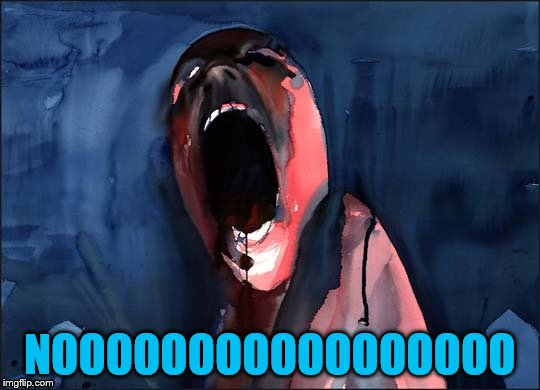 Pink Floyd Scream | NOOOOOOOOOOOOOOOOO | image tagged in pink floyd scream | made w/ Imgflip meme maker